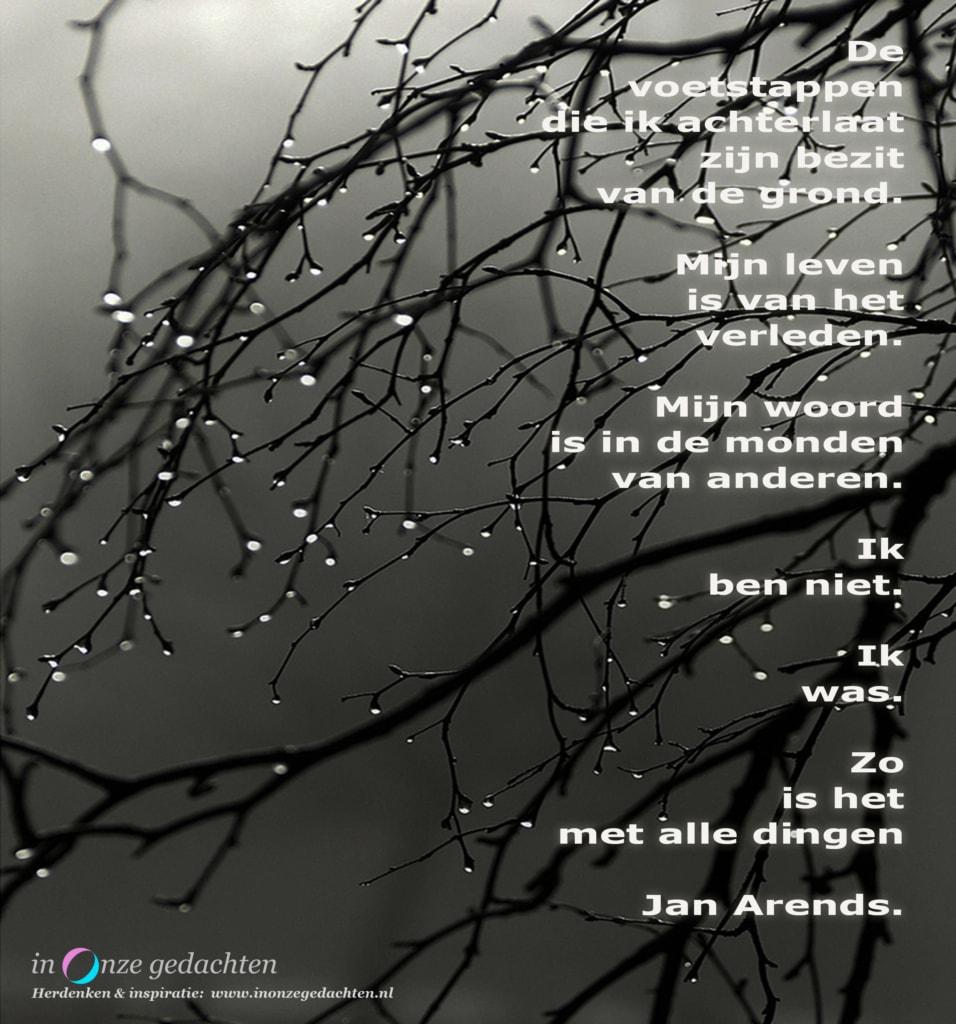 De voetstappen - Jan Arends