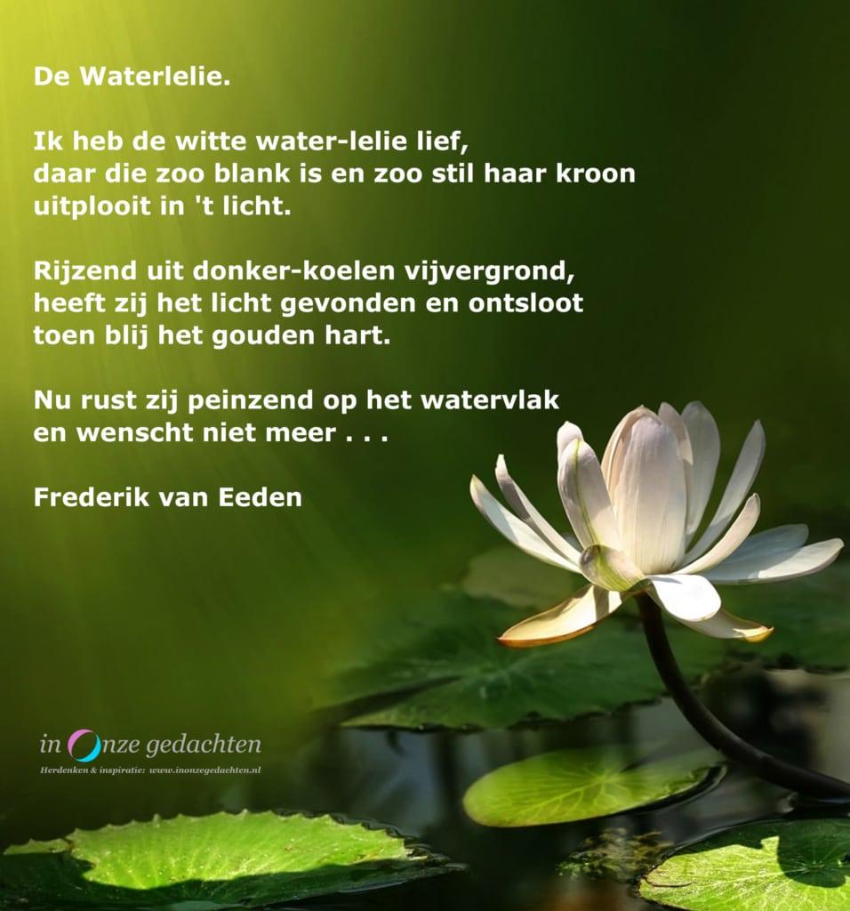 De waterlelie - Frederik van Eeden