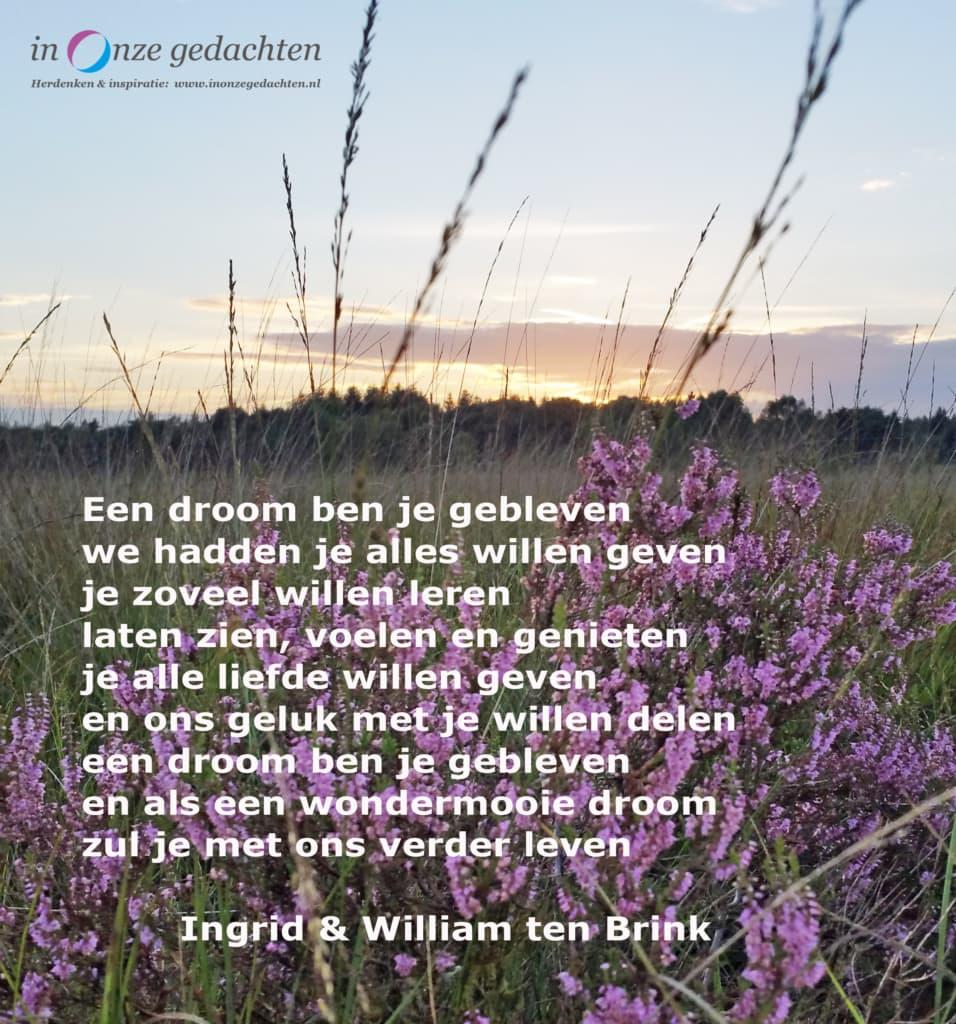 Een droom ben je gebleven - Ingrid en Willem ten Brink