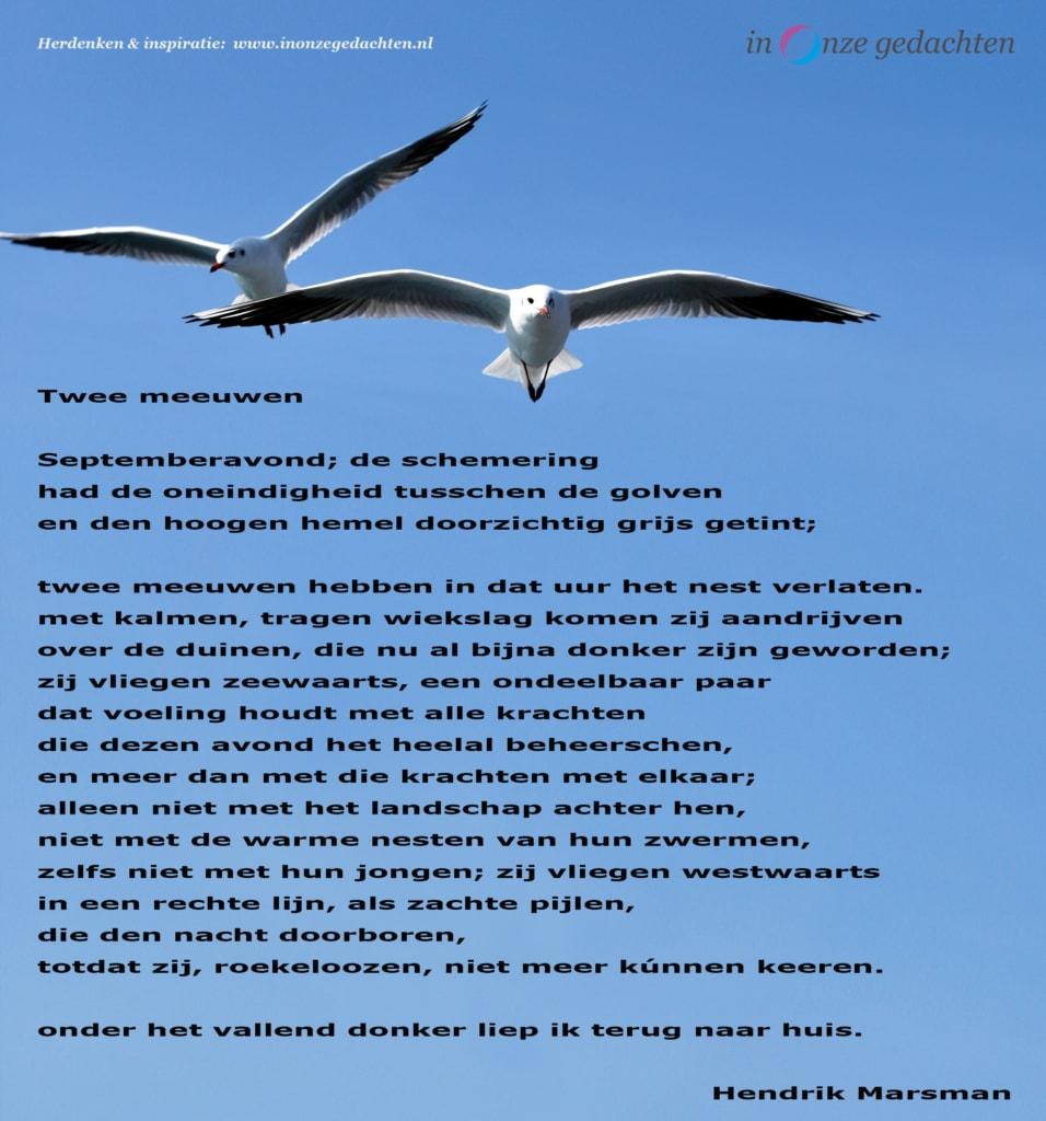 Twee meeuwen - Hendrik Marsman