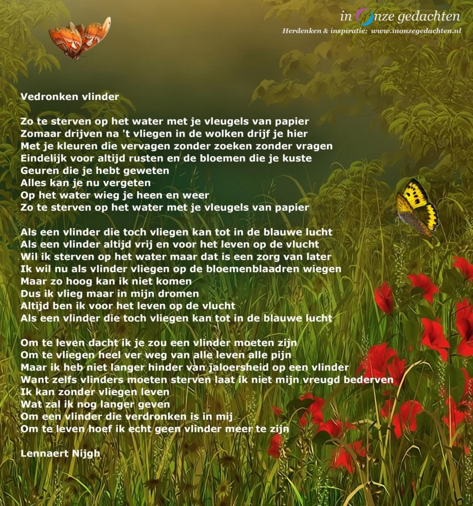 Verdronken vlinder - Lennaert Nijgh