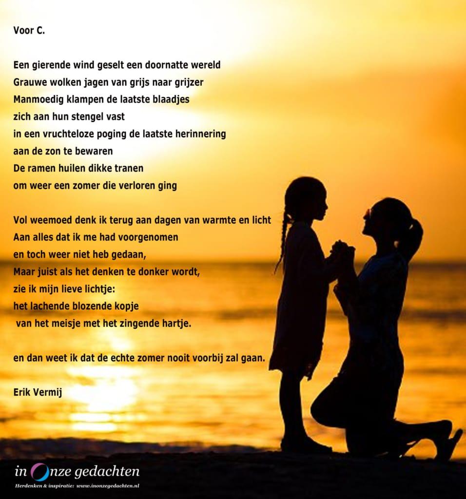 Voor C - Erik Vermij